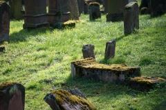 lumivers / jüdischer Friedhof Mainz