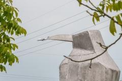 Lumivers / eine große Fliege für einen großen Vogel