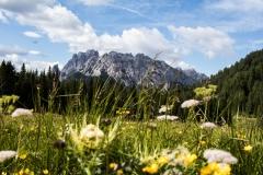 adidelaplaya / In den Dolomiten
