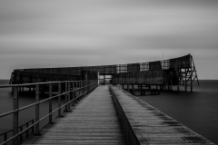 lexx_photo / Auf dem Holzweg