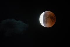 adidelaplaya / Wolkenfreie Mondfinsternis