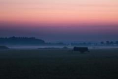 lexx_photo / Wasser im Nebel