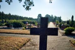 Photoauge /Friedhof