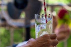 babblfisch / Überleben im Sommer
