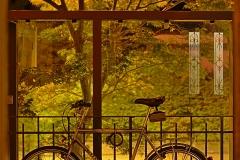 hermancheruscer / Fensterbild