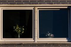 kamerakata / Fenster