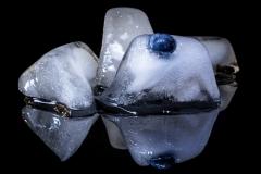 peter / frozen blueberry