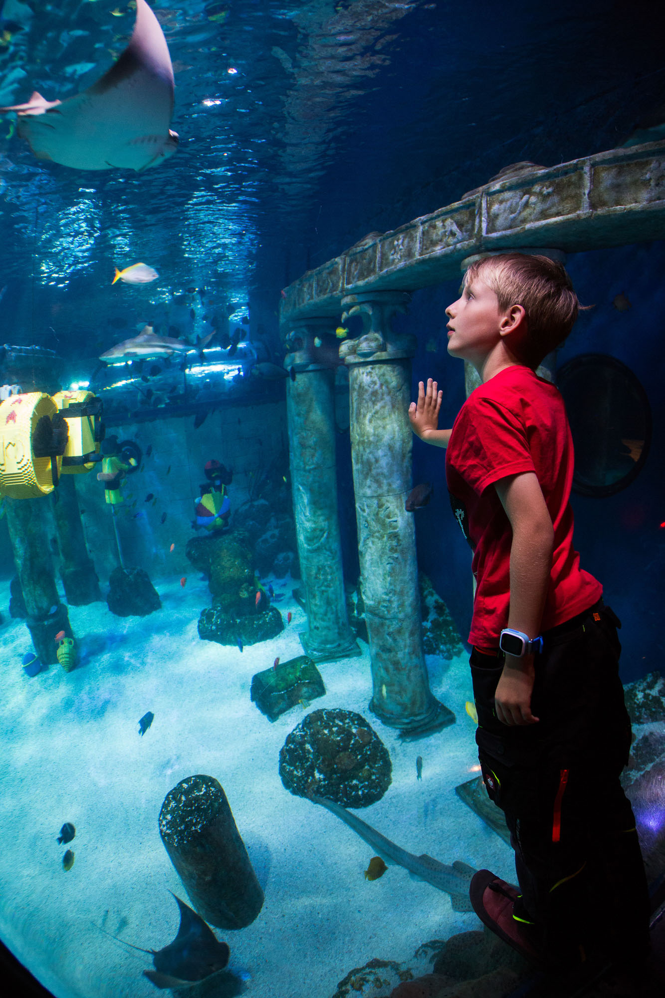 kamerakata / Atlantis