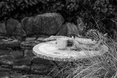 adidelaplaya / Im Garten