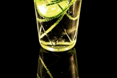 babblfisch / Gin Tonic