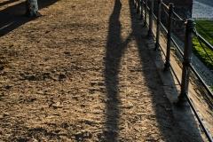expresskasse / sonnige Aussicht am Abend