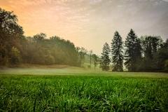 schneehaesli / Herbstliches Erwachen