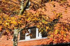 "dagmar/ immer noch ""goldener Oktober"""