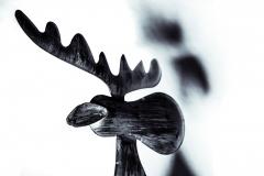 tschloss / Weihnachtselch im Licht