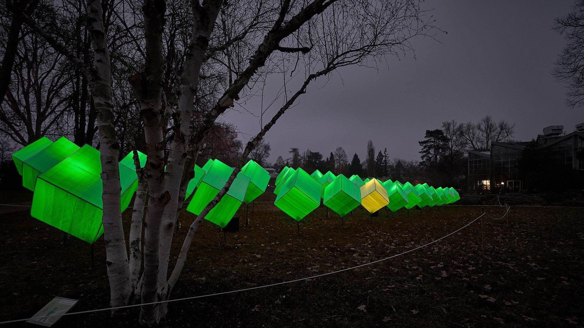 expresskasse / Cubes