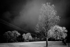 UnclePete / Winterlandschaft nachts um 11